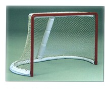 Professional Goal Frame